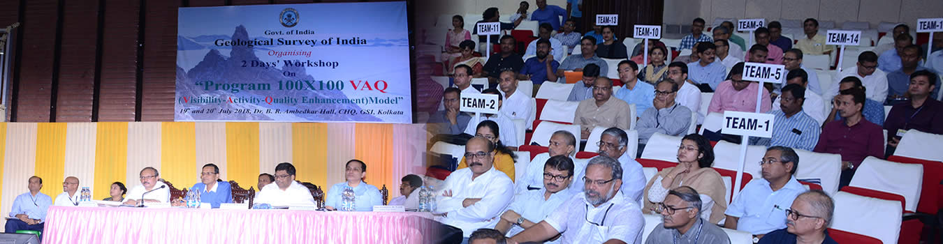 VAQ - An approach to enhance Visibility, increase Activity and enrich Quality of the organisation