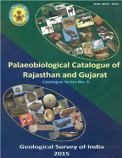 Catalogue Series Image